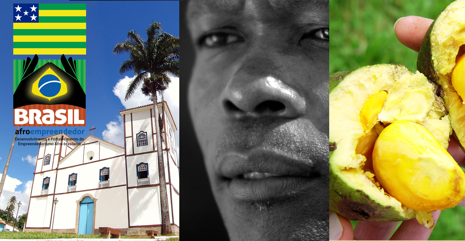 Seminário Estadual do Projeto Brasil Afroempreendedor – Goiás
